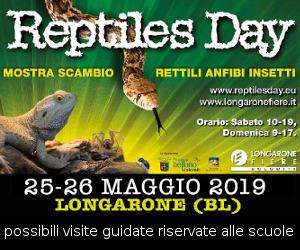 reptiles day - longarone 25/26 maggio